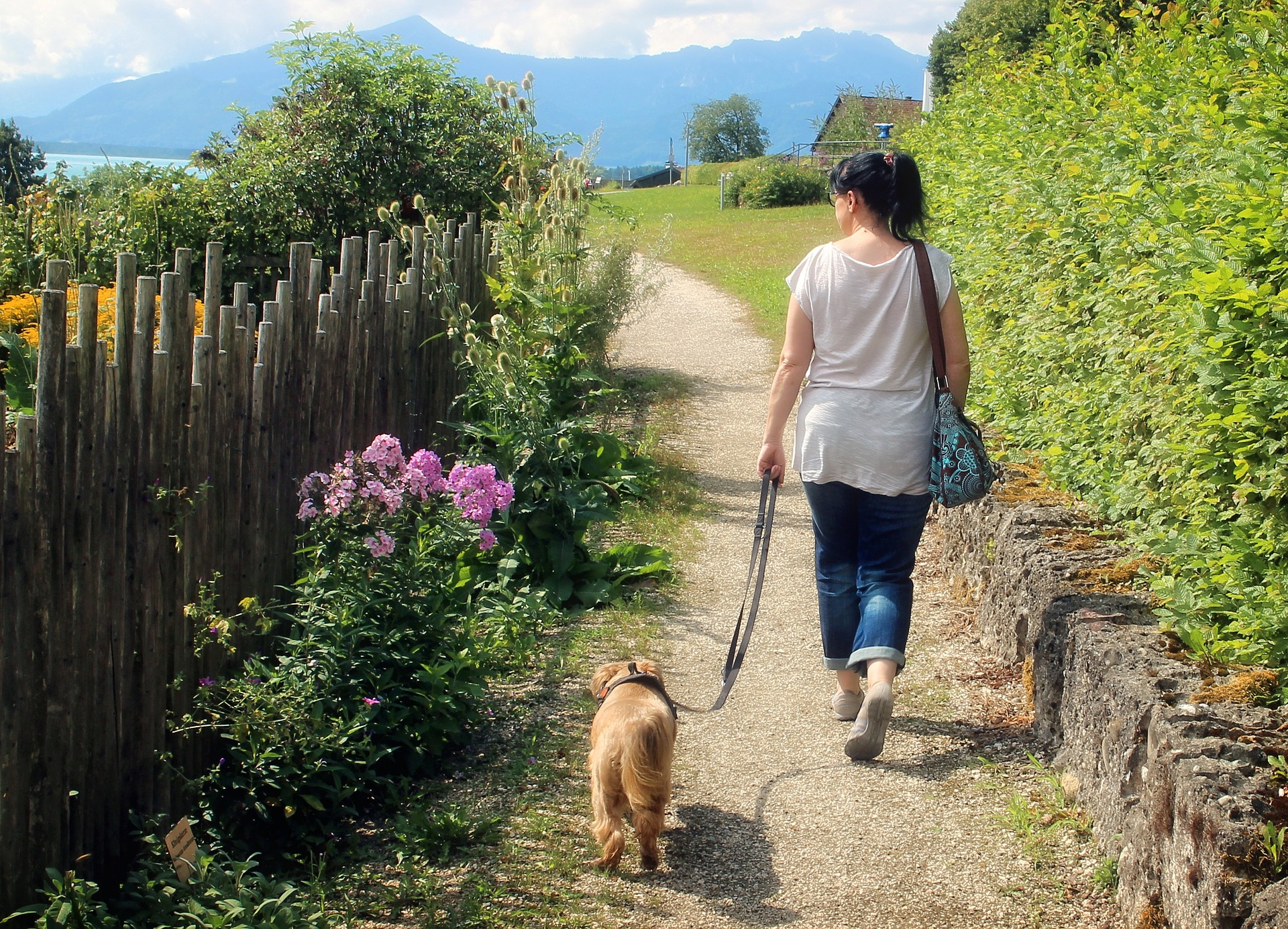 woman walking dog on pretty grassy path